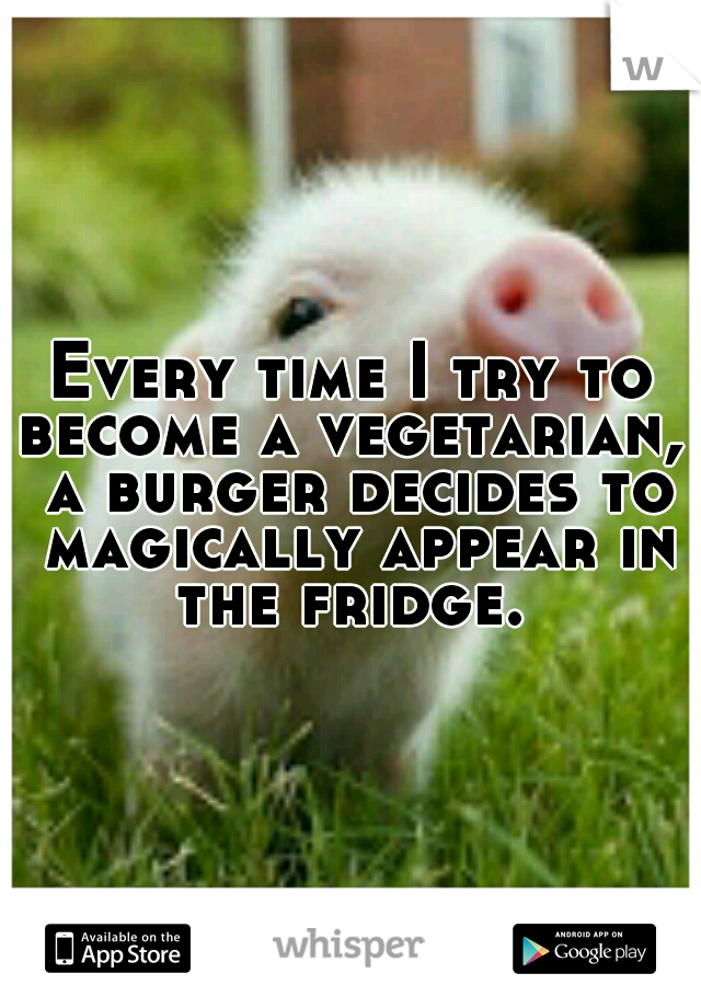 Every time I try to become a vegetarian,  a burger decides to magically appear in the fridge.