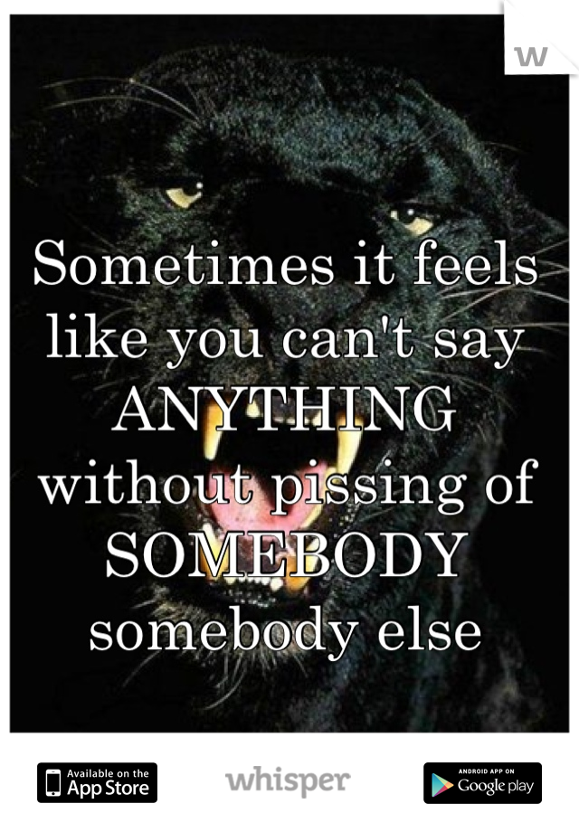 Sometimes it feels like you can't say ANYTHING without pissing of SOMEBODY somebody else