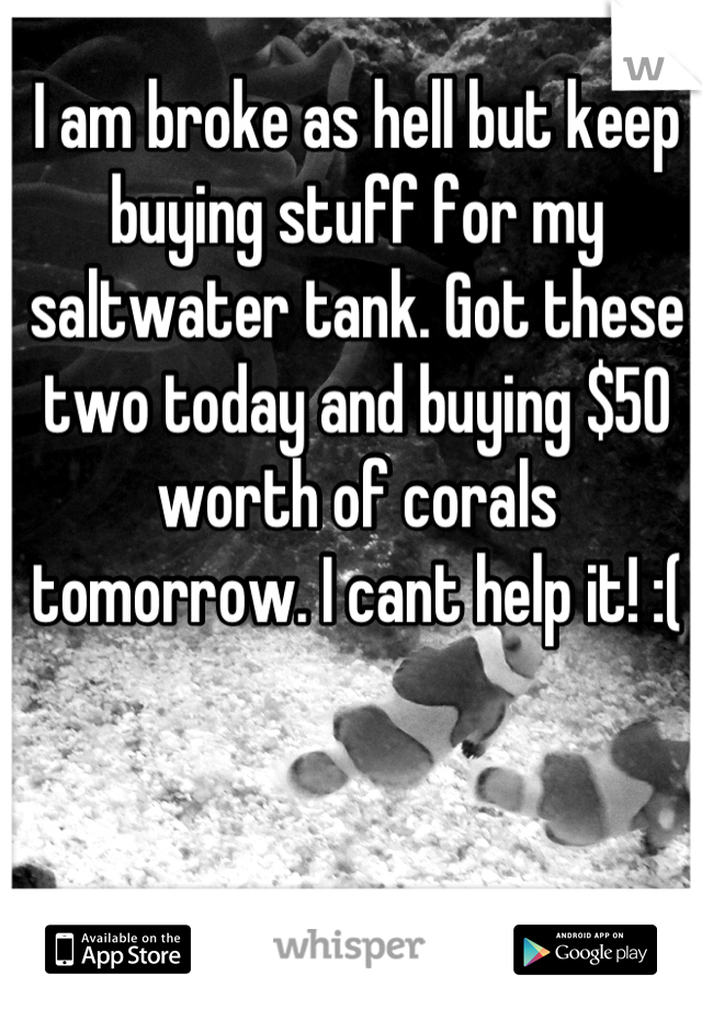 I am broke as hell but keep buying stuff for my saltwater tank. Got these two today and buying $50 worth of corals tomorrow. I cant help it! :(
