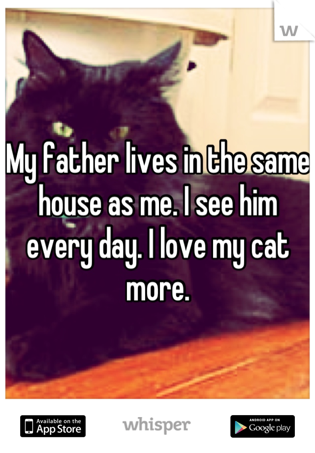 My father lives in the same house as me. I see him every day. I love my cat more.