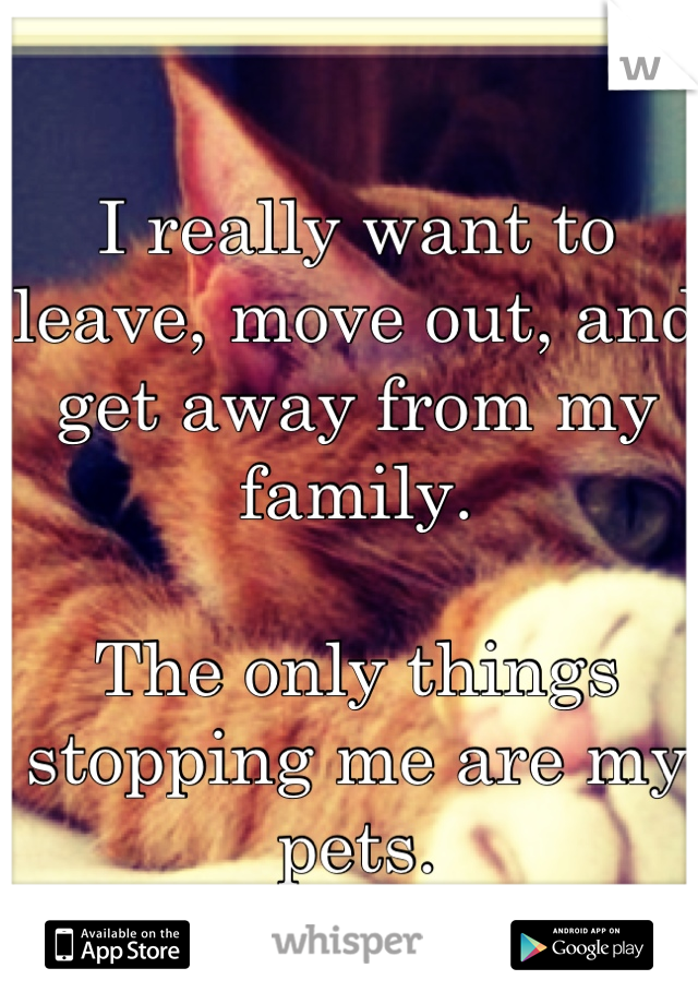 I really want to leave, move out, and get away from my family.  The only things stopping me are my pets.