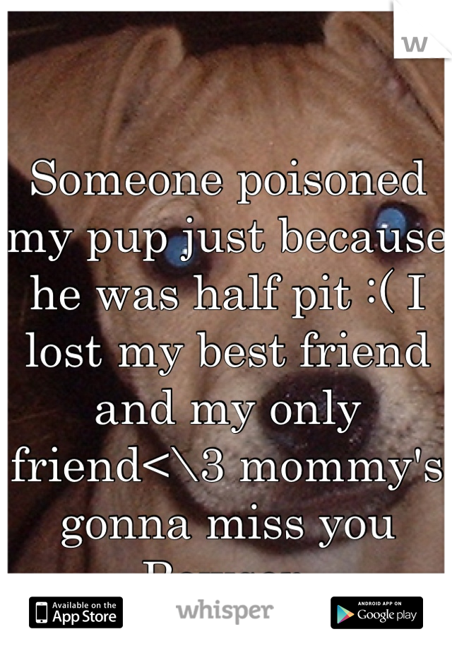 Someone poisoned my pup just because he was half pit :( I lost my best friend and my only friend<\3 mommy's gonna miss you Bowser