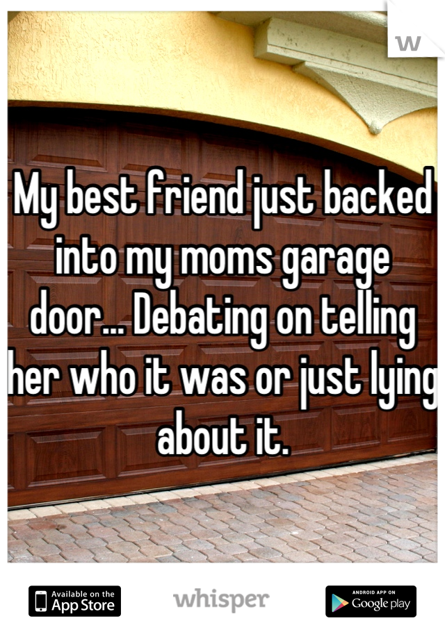 My best friend just backed into my moms garage door... Debating on telling her who it was or just lying about it.