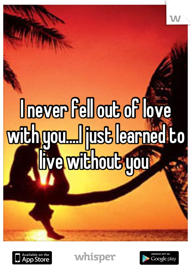 I never fell out of love with you....I just learned to live without you