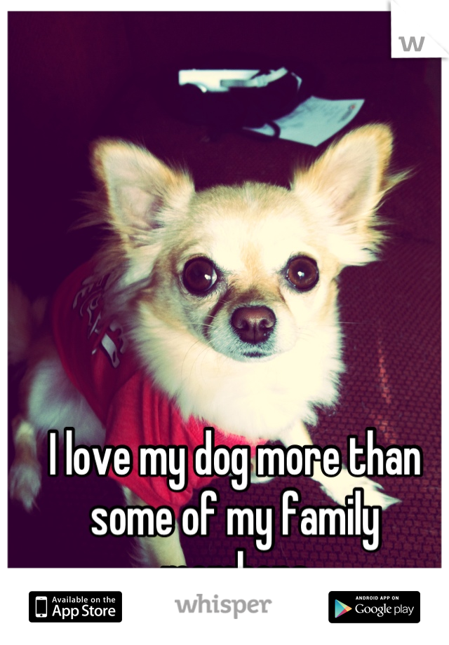 I love my dog more than some of my family members