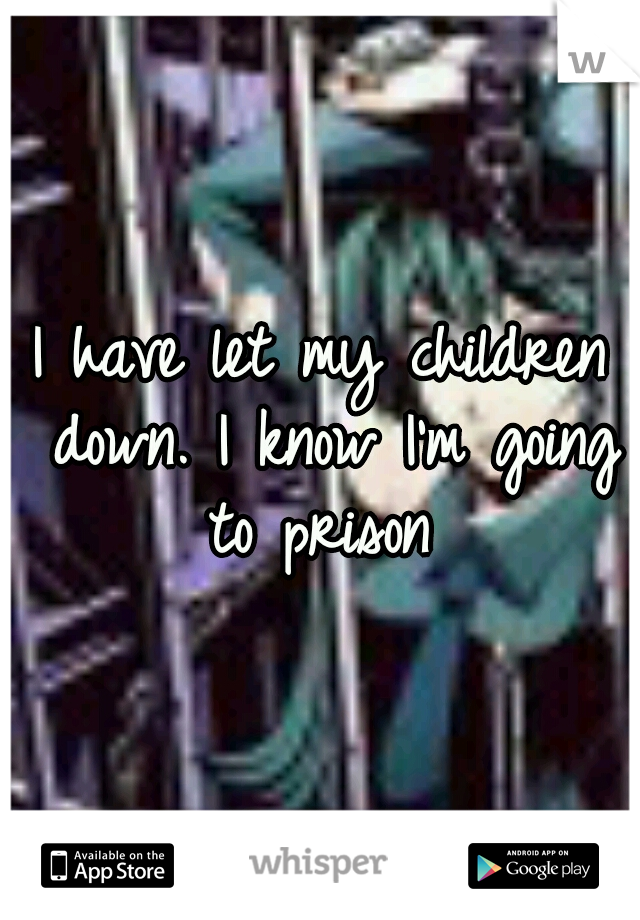 I have let my children down. I know I'm going to prison