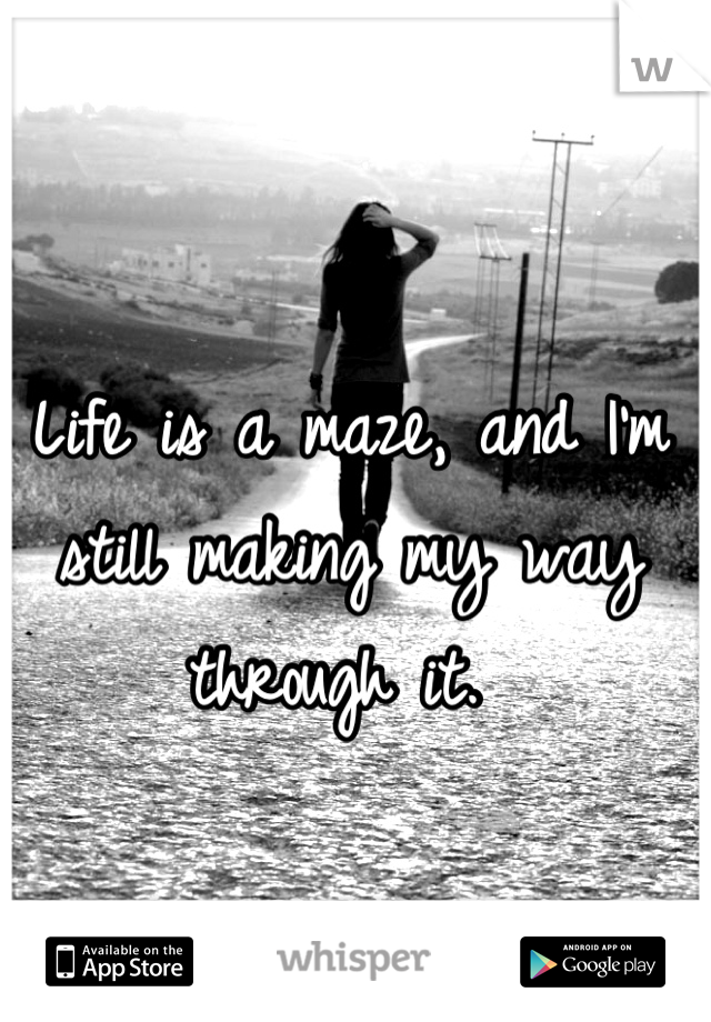 Life is a maze, and I'm still making my way through it.