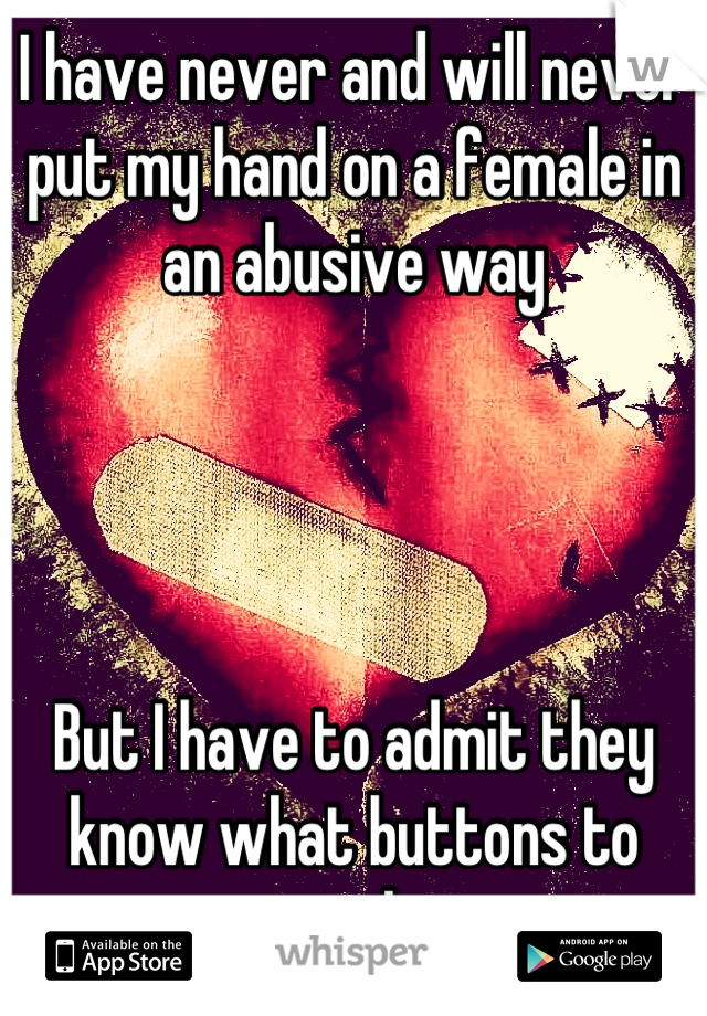 I have never and will never put my hand on a female in an abusive way     But I have to admit they know what buttons to push