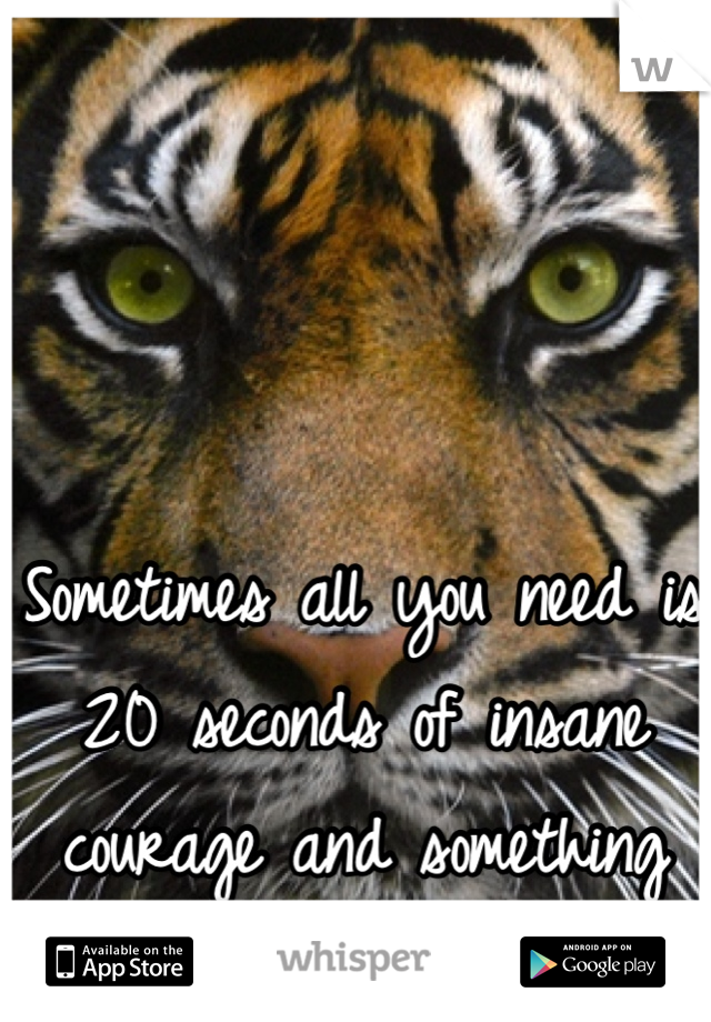 Sometimes all you need is 20 seconds of insane courage and something great will come of it