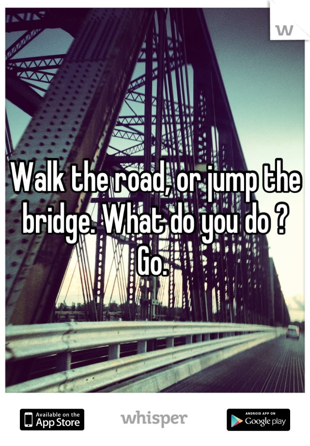 Walk the road, or jump the bridge. What do you do ? Go.
