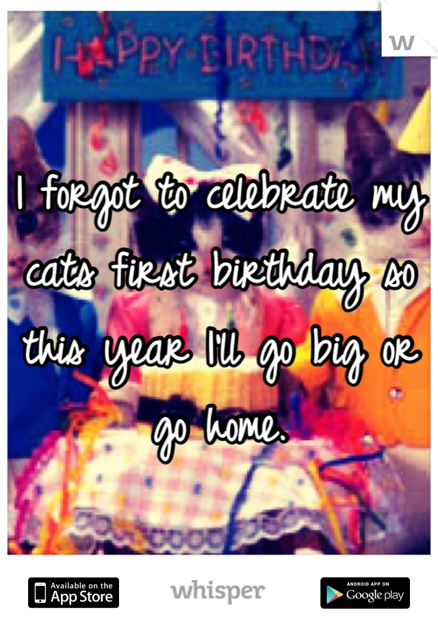 I forgot to celebrate my cats first birthday so this year I'll go big or go home.
