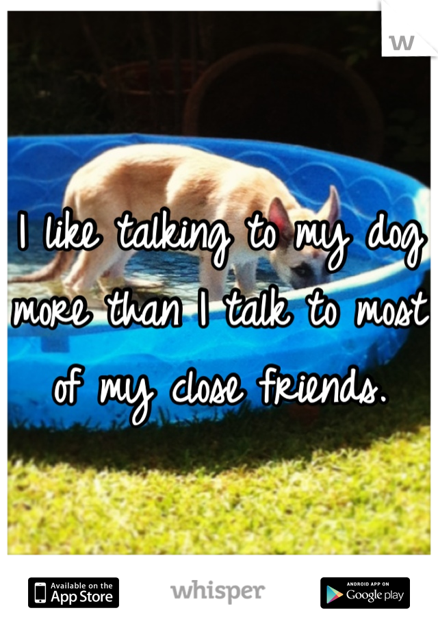 I like talking to my dog more than I talk to most of my close friends.