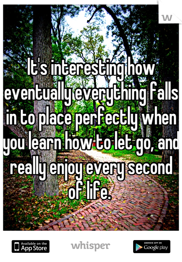 It's interesting how eventually everything falls in to place perfectly when you learn how to let go, and really enjoy every second of life.