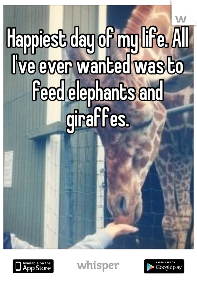 Happiest day of my life. All I've ever wanted was to feed elephants and giraffes.