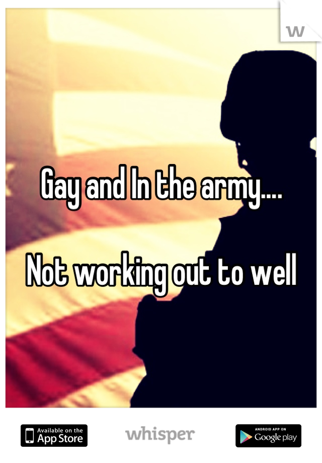 Gay and In the army....  Not working out to well