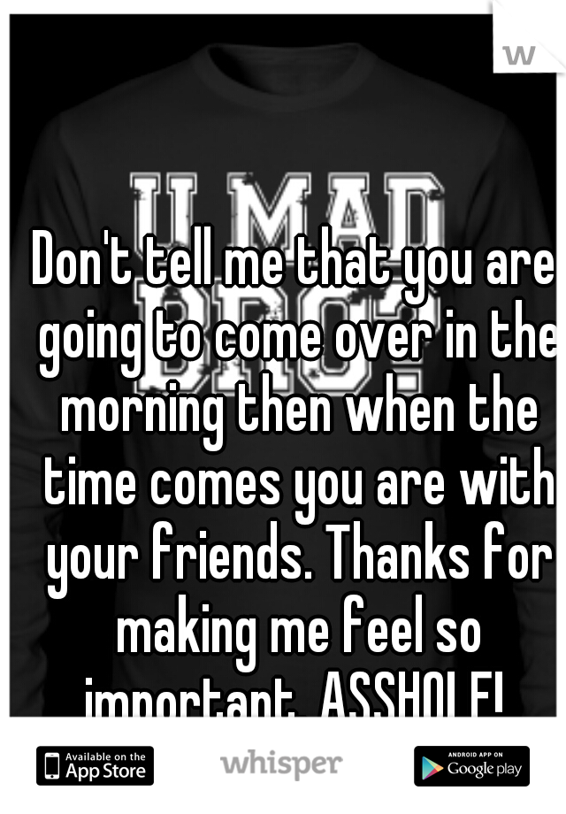 Don't tell me that you are going to come over in the morning then when the time comes you are with your friends. Thanks for making me feel so important. ASSHOLE!