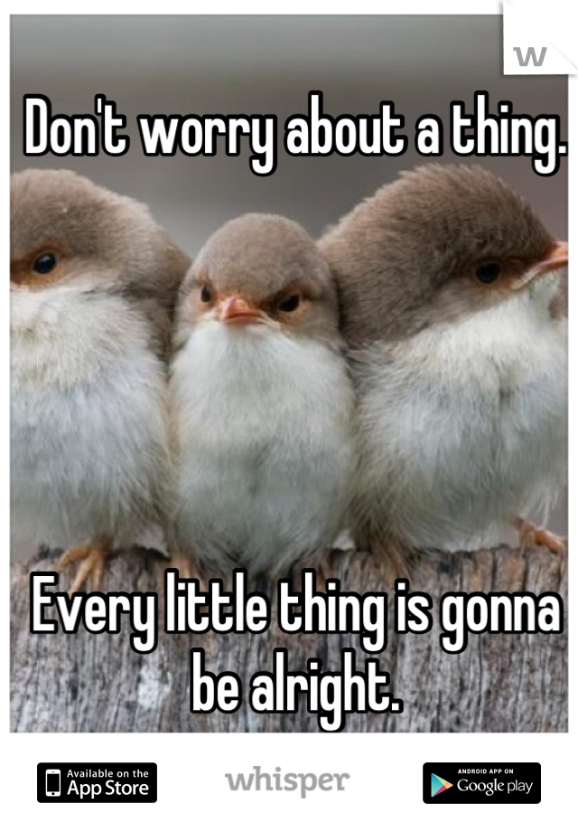 Don't worry about a thing.      Every little thing is gonna be alright.