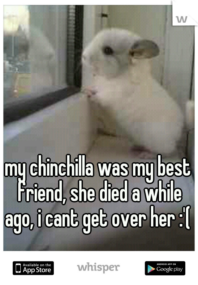 my chinchilla was my best friend, she died a while ago, i cant get over her :'(