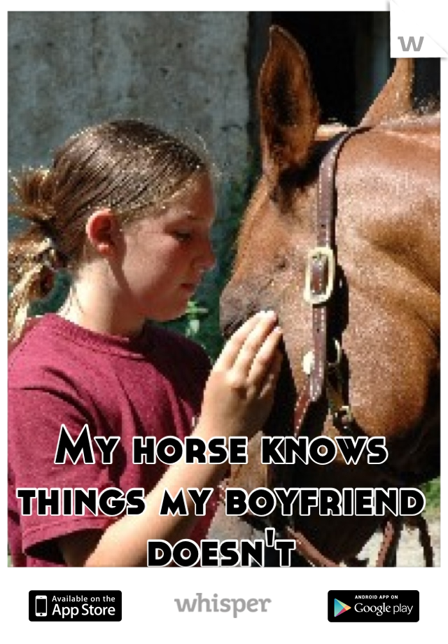 My horse knows things my boyfriend doesn't