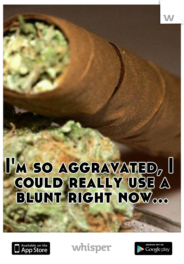 I'm so aggravated, I could really use a blunt right now...