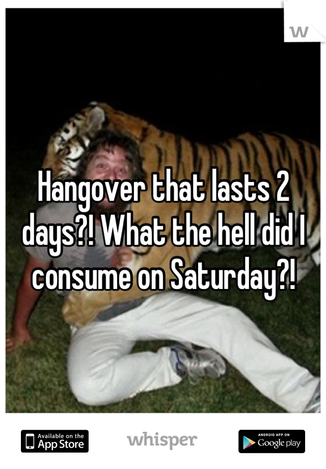 Hangover that lasts 2 days?! What the hell did I consume on Saturday?!