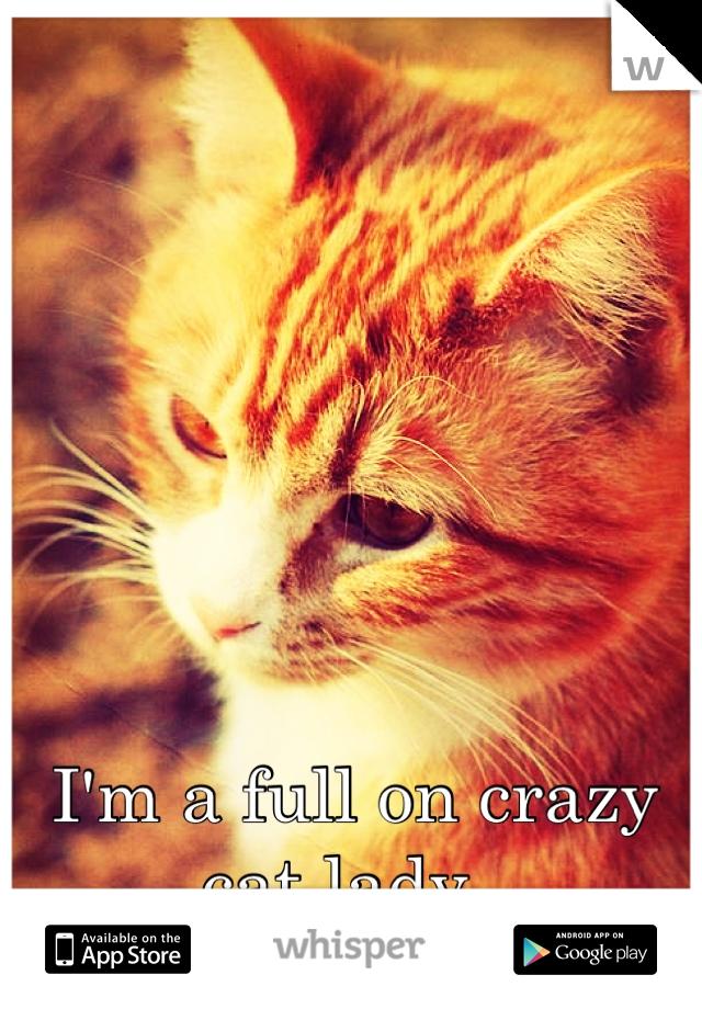 I'm a full on crazy cat lady.