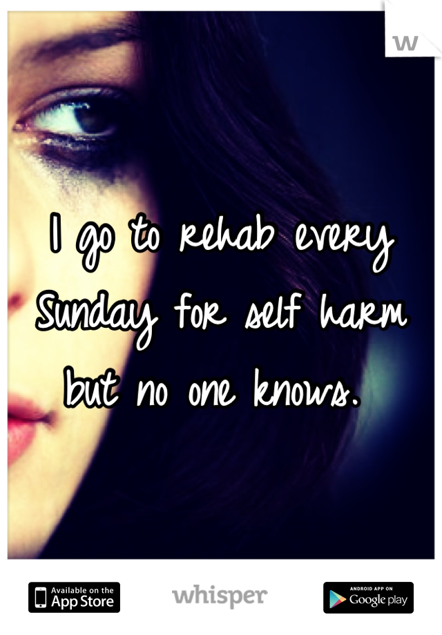 I go to rehab every Sunday for self harm but no one knows.