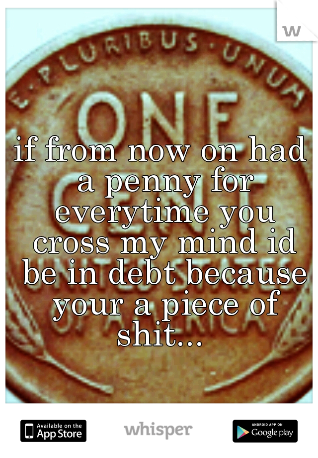 if from now on had a penny for everytime you cross my mind id be in debt because your a piece of shit...