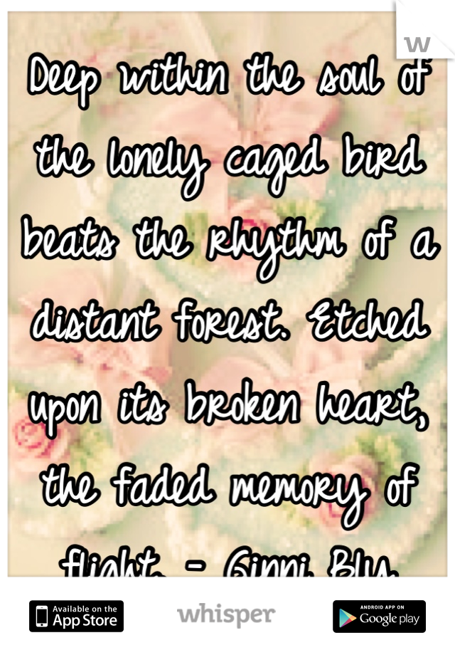 Deep within the soul of the lonely caged bird beats the rhythm of a distant forest. Etched upon its broken heart, the faded memory of flight. - Ginni Bly