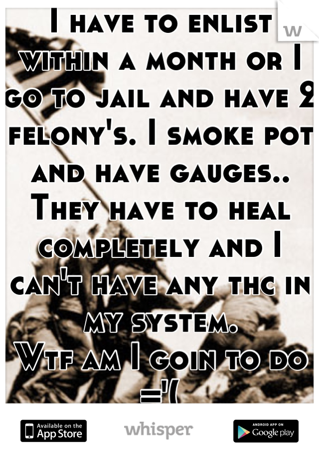 I have to enlist within a month or I go to jail and have 2 felony's. I smoke pot and have gauges.. They have to heal completely and I can't have any thc in my system. Wtf am I goin to do ='( Life sucks