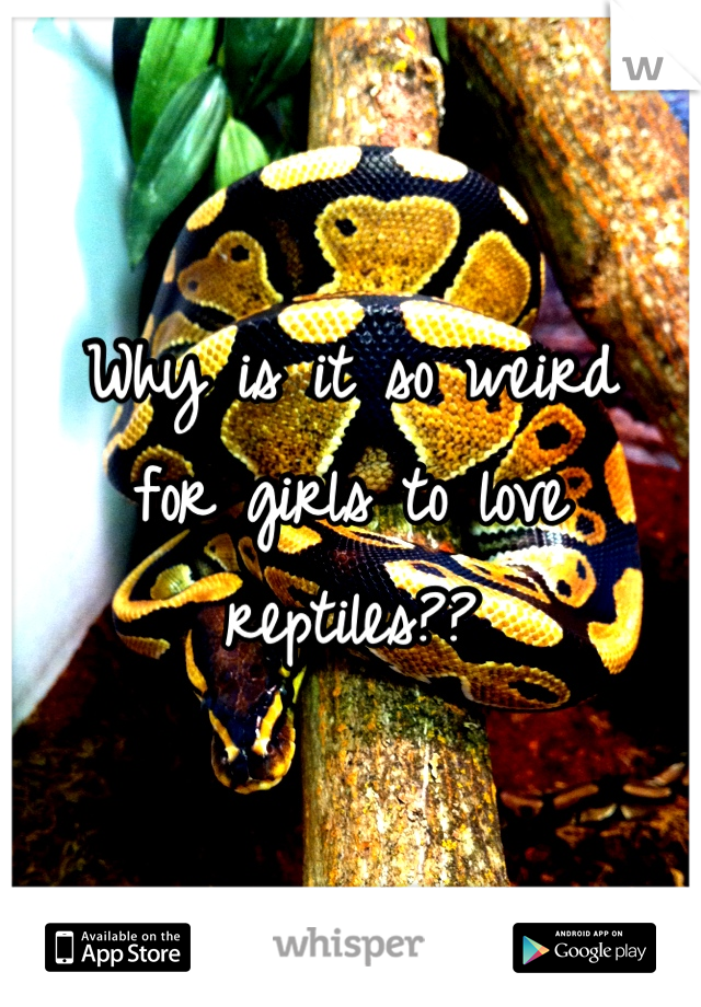 Why is it so weird for girls to love reptiles??