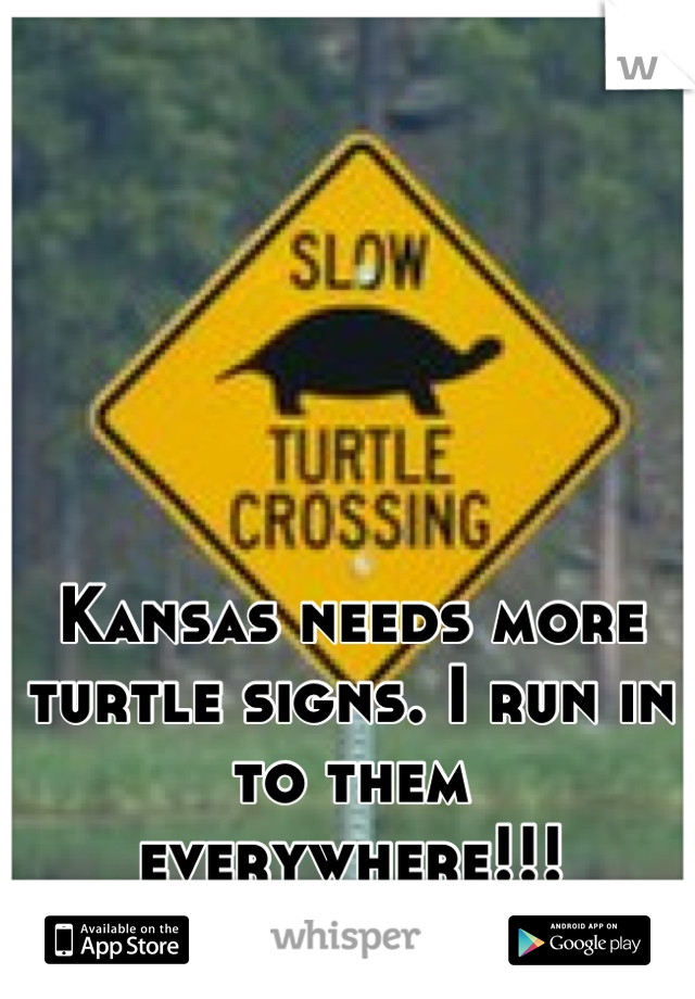 Kansas needs more turtle signs. I run in to them everywhere!!!