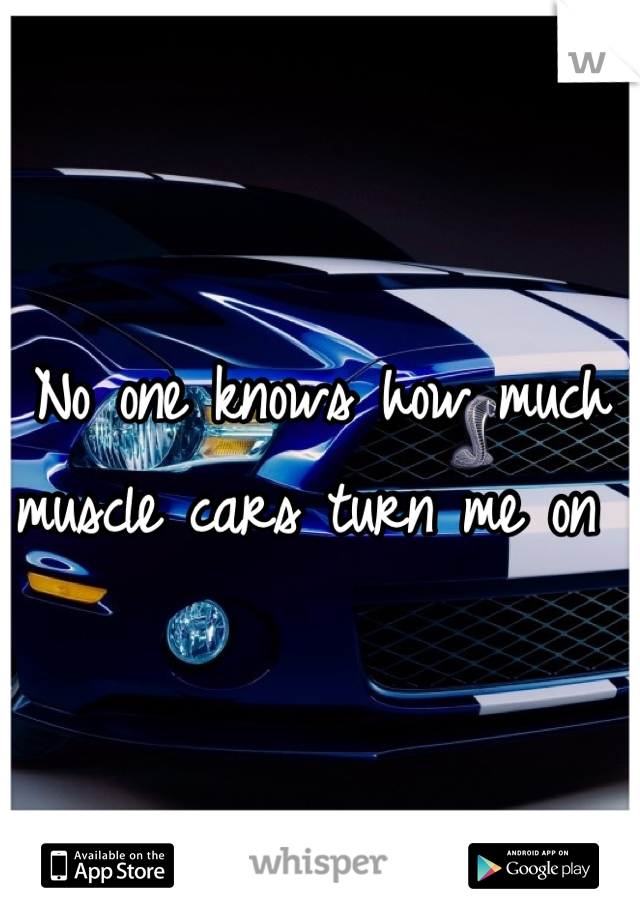 No one knows how much muscle cars turn me on