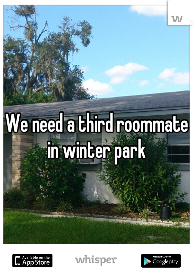 We need a third roommate in winter park