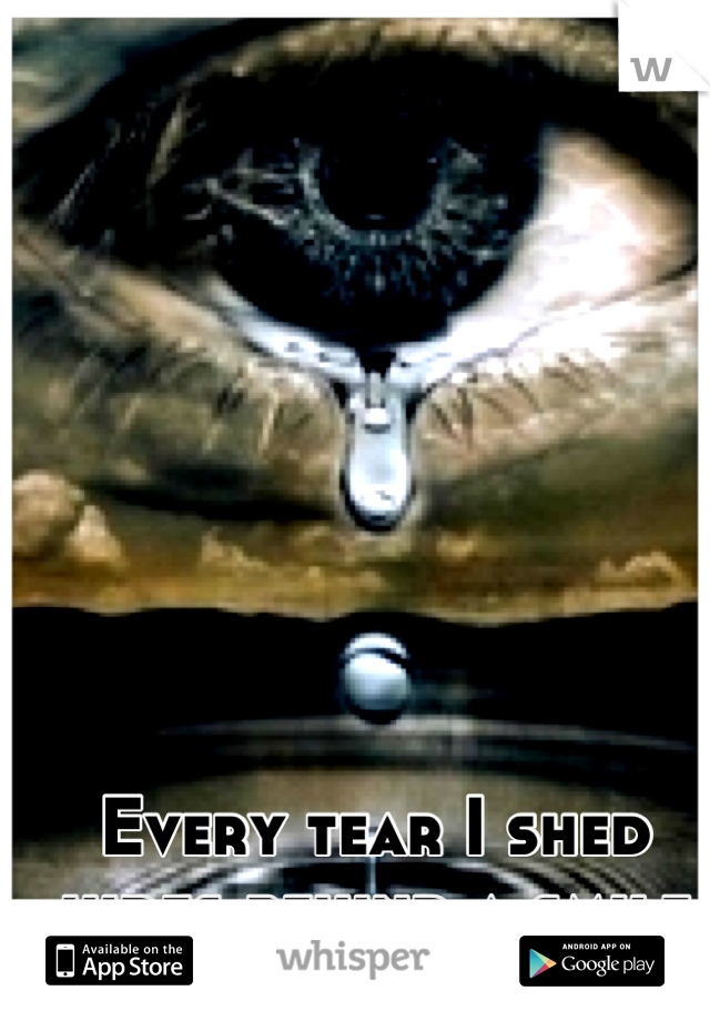 Every tear I shed hides behind a smile