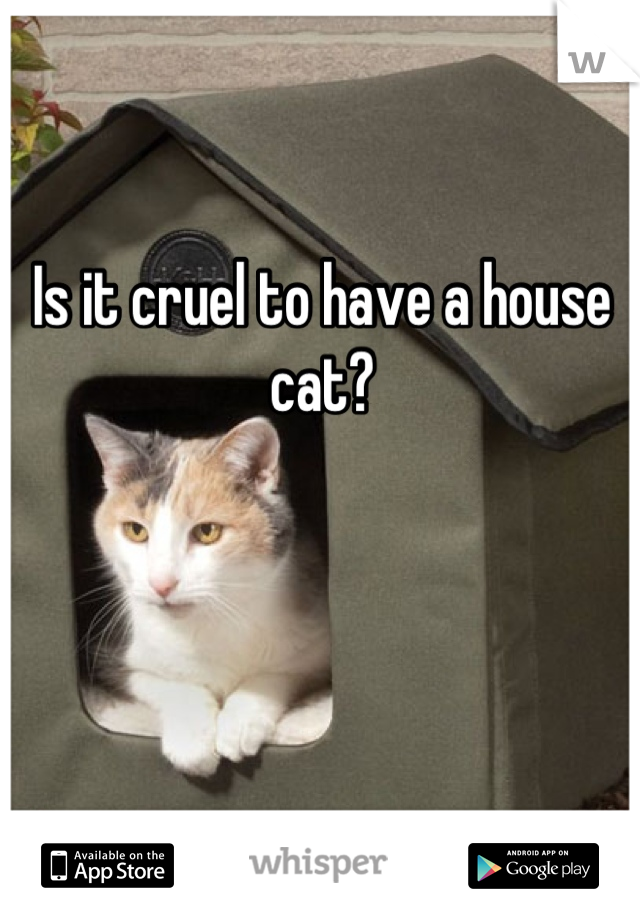 Is it cruel to have a house cat?