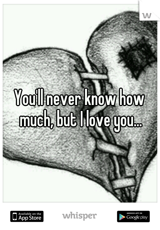 You'll never know how much, but I love you...