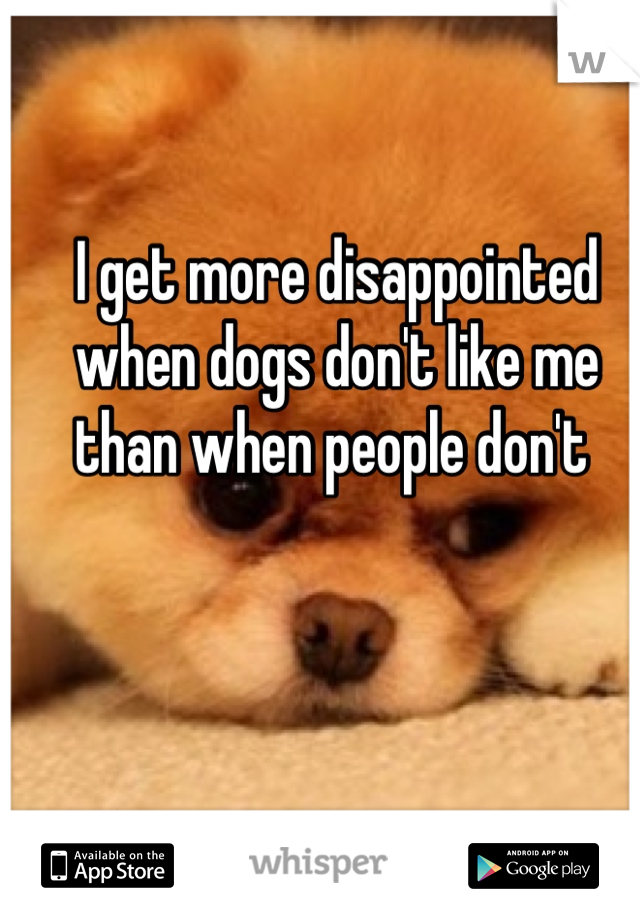 I get more disappointed when dogs don't like me than when people don't