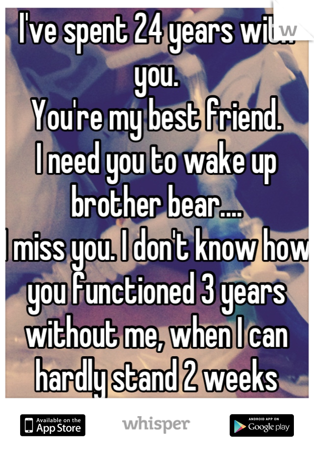 I've spent 24 years with you.  You're my best friend. I need you to wake up brother bear.... I miss you. I don't know how you functioned 3 years without me, when I can hardly stand 2 weeks without you