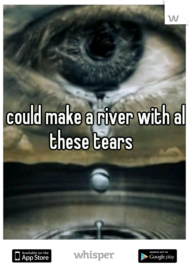 I could make a river with all these tears