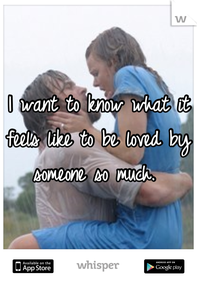 I want to know what it feels like to be loved by someone so much.
