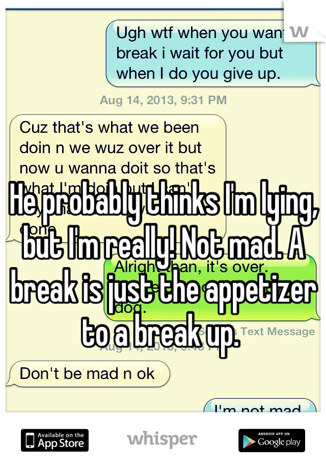 He probably thinks I'm lying, but I'm really! Not mad. A break is just the appetizer to a break up.