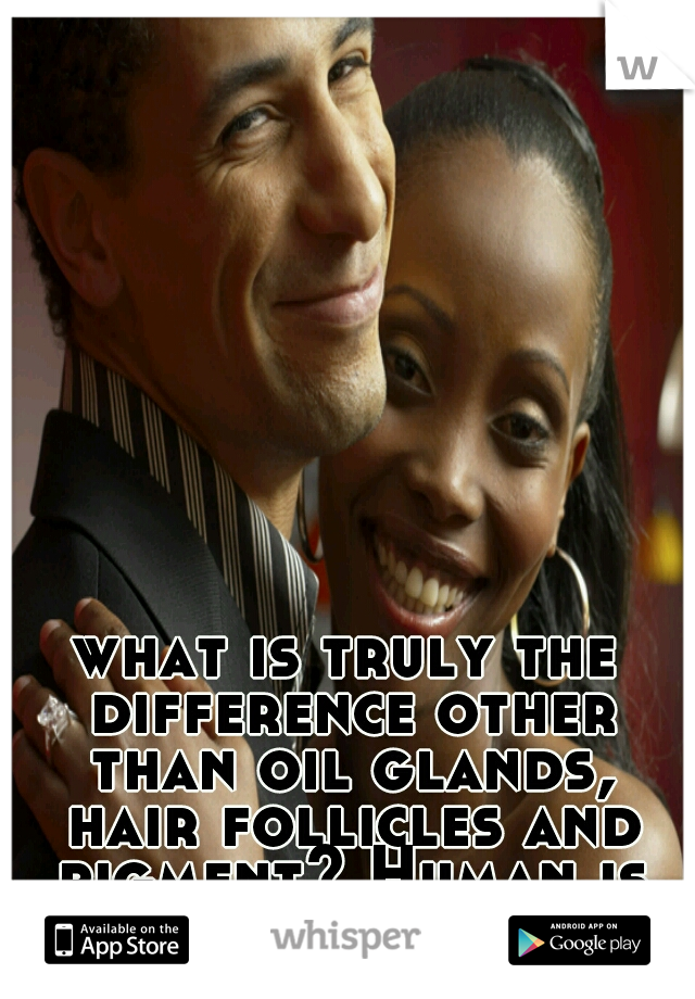 what is truly the difference other than oil glands, hair follicles and pigment? Human is human.