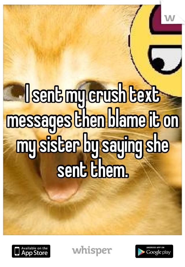 I sent my crush text messages then blame it on my sister by saying she sent them.