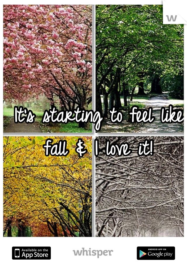 It's starting to feel like fall & I love it!