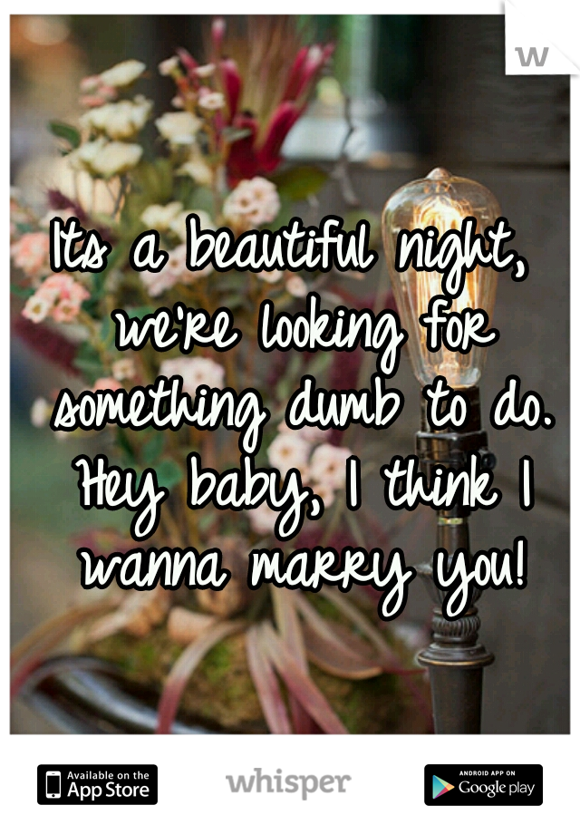 Its a beautiful night, we're looking for something dumb to do. Hey baby, I think I wanna marry you!