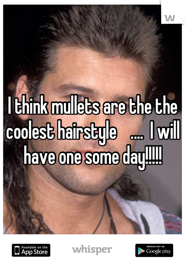 I think mullets are the the coolest hairstyle    ....  I will have one some day!!!!!