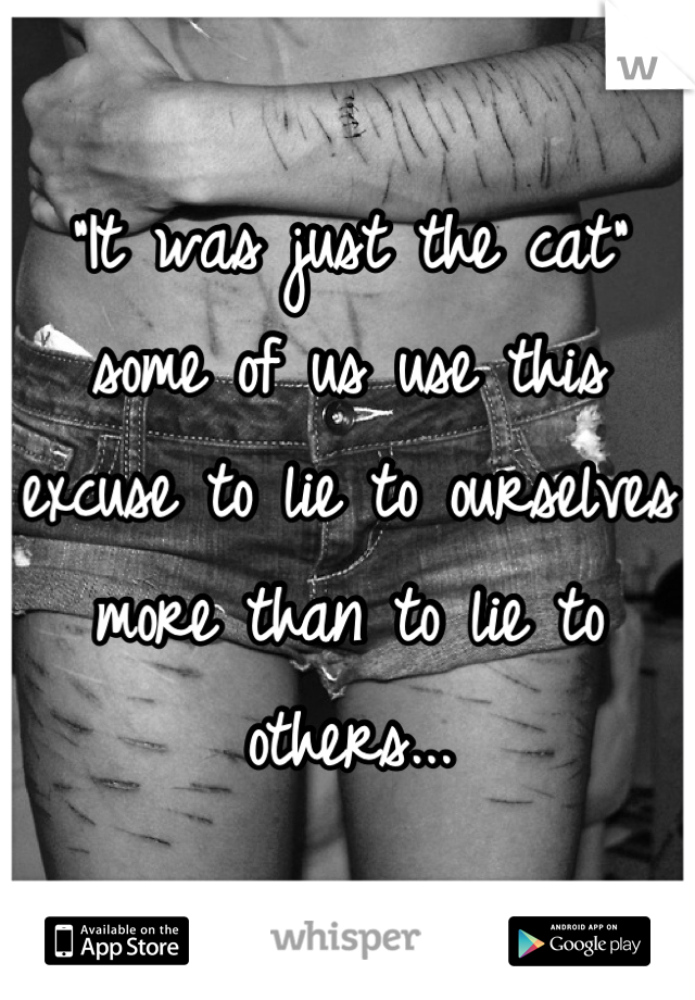"""""""It was just the cat"""" some of us use this excuse to lie to ourselves more than to lie to others..."""