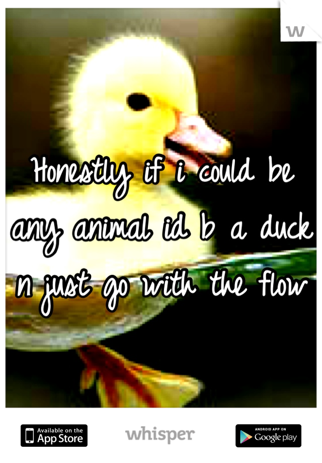 Honestly if i could be any animal id b a duck n just go with the flow
