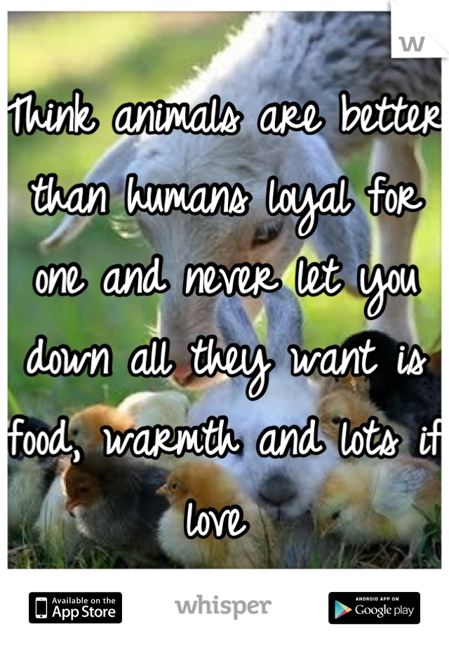 Think animals are better than humans loyal for one and never let you down all they want is food, warmth and lots if love